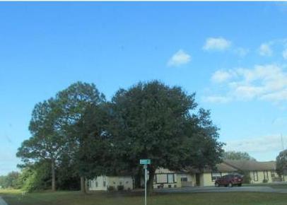 107 Voss Ct, Sebring FL Foreclosure Property