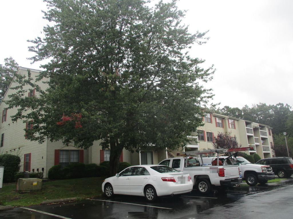 61 Mattix Run, Absecon NJ Foreclosure Property