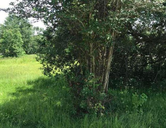 3043 Quave Rd, Diberville MS Foreclosure Property