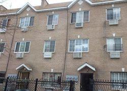 Prospect Ave Apt 2b, Bronx