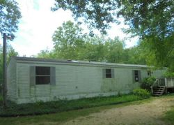 E Bricker Rd, Fenwick, MI Foreclosure Home