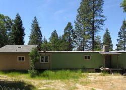 Bald Rock Rd, Berry Creek, CA Foreclosure Home