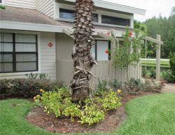 Cypress Pond Rd Apt, Palm Harbor