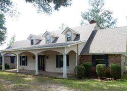 Morton #28710134 Foreclosed Homes