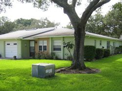 Orange Tree Cir E A, Palm Harbor