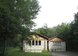 Fox Mountain Rd, Livingston Manor