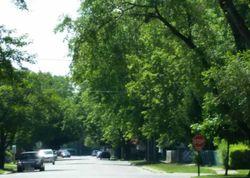 S Utica Ave, Evergreen Park
