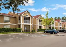 Highland Oak Dr Uni, Tampa