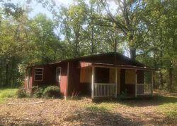 Adobe Trl, Flint, TX Foreclosure Home