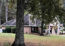 River Pines Dr, Springfield, LA Foreclosure Home