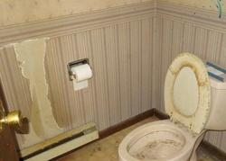 W Pine St, Alda, NE Foreclosure Home