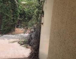 E Alejo Rd, Palm Springs