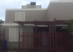 Cedar Ln, Hollywood