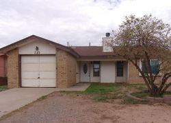Dooley St, Alamogordo, NM Foreclosure Home