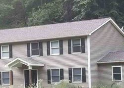 Ulster #29862559 Foreclosed Homes