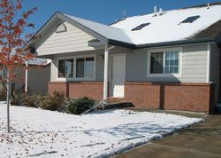 Flat Iron St, Windsor, CO Foreclosure Home