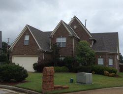 Spence Cv, Memphis