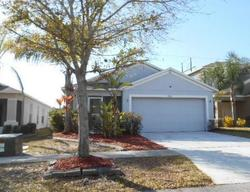 Carriage Pointe Dr, Gibsonton