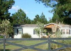 Pineland Estates Rd, Pineland